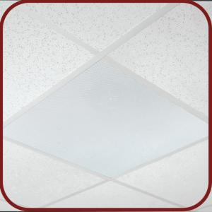 2X2 Drop In Full Grill Ceiling Speaker - Amplified and Non Amplified
